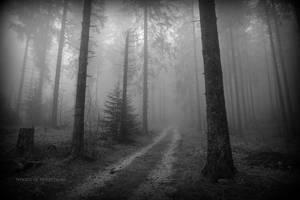 antique mysticisme 2 by deadforest17