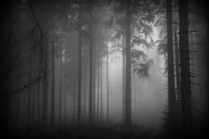 black serenity by deadforest17