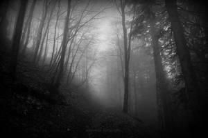 l'imaginaire au pouvoir by deadforest17