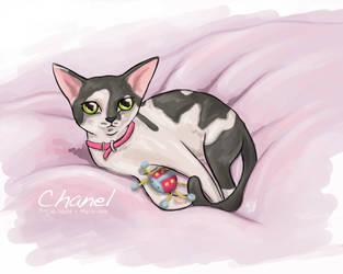 Chanel by iixRainexii