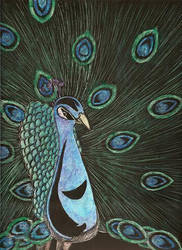 Peacock by blkmagick