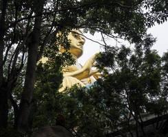 Buddha statue. Dambulla. Sri Lanka by jennystokes
