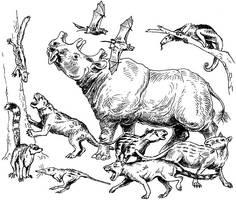 Eocene mammals by batworker