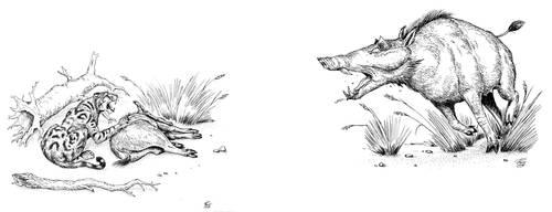The last Megalochoerus by batworker