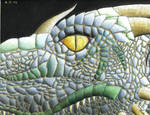 Eye of the Dragon by Manveruon