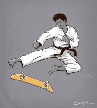 karate kickflip by temy0ng