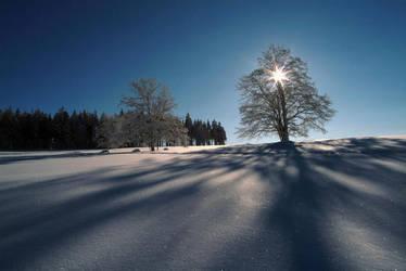 Winter II by flymen-studio