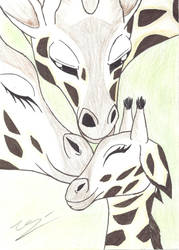 Giraffe Family by BLACKSKULL13