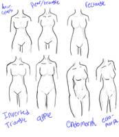 female body types by kishimoto-kyoto