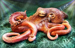 Sculpted Octopus by Wood-Splitter-Lee