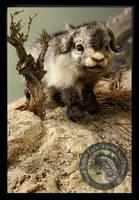 SOLD Handmade Baby Muskox by Wood-Splitter-Lee