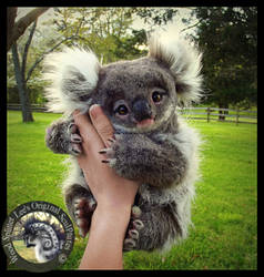 SOLD- Handmade Poseable Baby Koala Bear! by Wood-Splitter-Lee