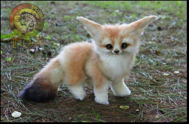 Handmade Fully Poseable Baby Fennec Fox! by Wood-Splitter-Lee