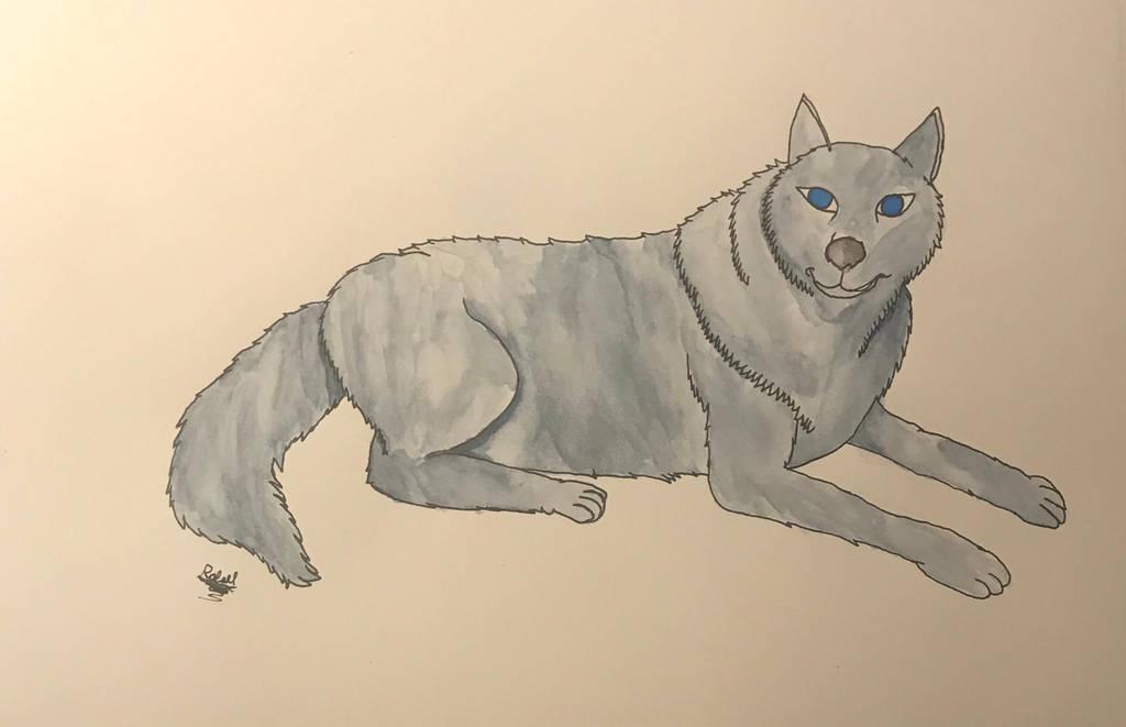 Lobo  by MR-R13