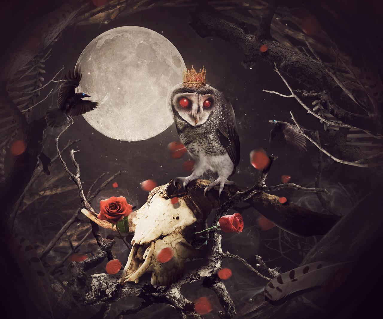 King Owl II by MixeRBink