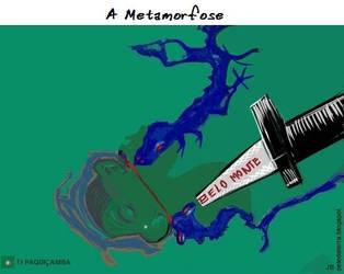 UHE Belo Monte by Pele-da-terra