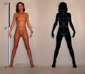 Human Anatomy For Artists V by leadbirdie