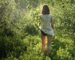 Summer in Ingermanland 8 by leadbirdie