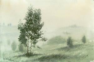 Morning mists by mwolski