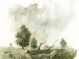 Log by mwolski