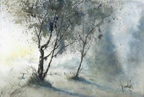 Birches III by mwolski