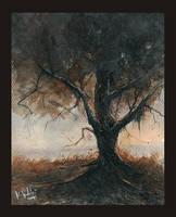 Old Oak II by mwolski