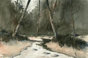 Stream II by mwolski