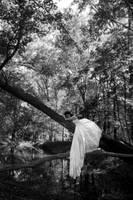 Fairy tale shenanigans by alizarine