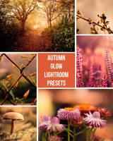 Autumn Glow Lightroom Presets by presetsgalore