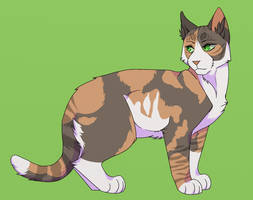 Tawnypelt by th1stlew1ng