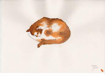 Sleeping Cat by Jessicachughes