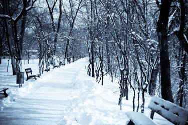 Winter landscape by vectorialpx