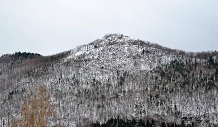 Brasov landscape by vectorialpx