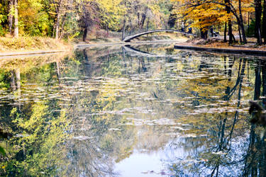 Lake landscape by vectorialpx
