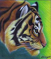 Tiger by jp-ocampo