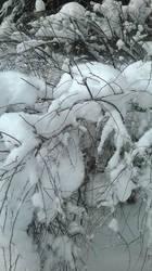 winter art  2 by kr1ssu