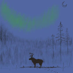 Norrsken by PeterWhale