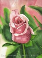 My little rose by Lillian-Bann