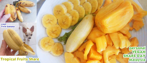 vegan: Tropical fruits share by Doll1988