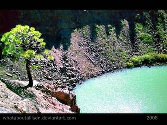Neon Lake by WhatAboutALLISON