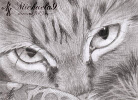 23. ACEO - Watching You by Michaela9