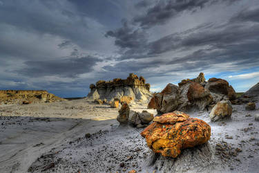 Bisti Wilderness New Mexico USA by nolra
