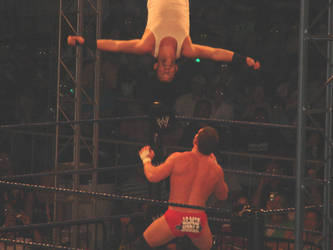 WWE SMACKDOWN SURVIVOR SERIES2 by Eternal-Fallen-Angel