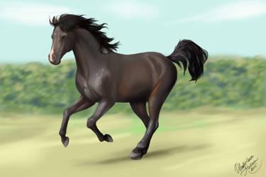 Horse by Koshken