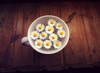 Cup full of summer.. by melliiex3