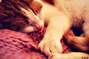 soft sleep by silya88