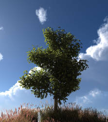 Ze Tree by o0WARLORD0o