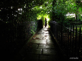 the other side of the gate by Estruda