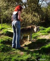 Estruda And the wolf by Estruda