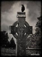 The Raven by Estruda